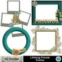 Lifelong_friends_frames-01_small