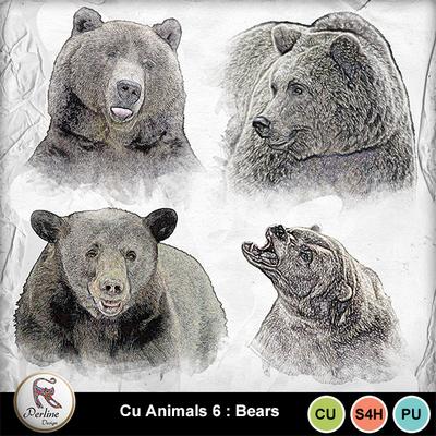 Pv_6-bears