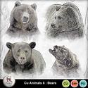 Pv_6-bears_small