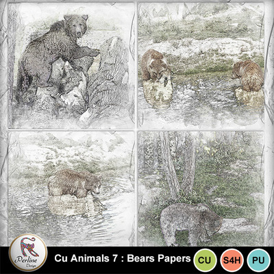 Pv_7-bears