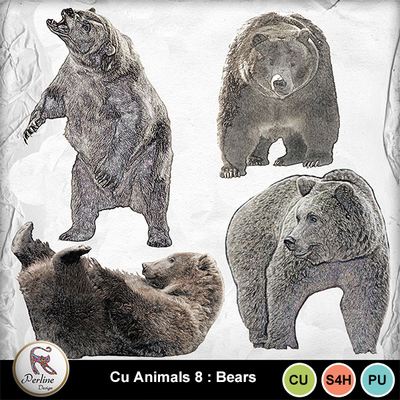 Pv_8-bears