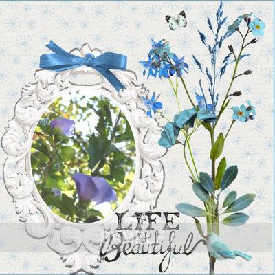 Msp_fleurs_bleues_page4