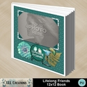Lifelong_friends_12x12_book-001a_small