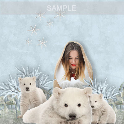 Msp_polar_bear_page6