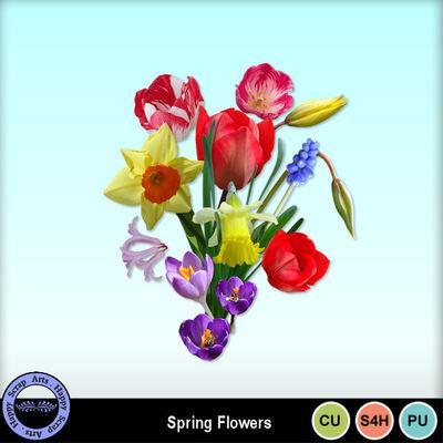 Springflowerscu1