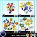 Springflowerscub1_small