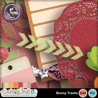 Bunny-tracks-2_5