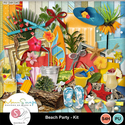Beachpartykit_small
