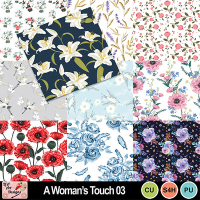 A_woman_s_touch_03_preview