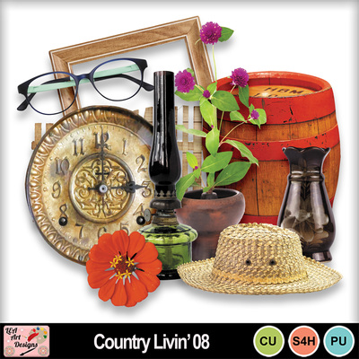 Country_livin__08_preview