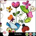 Springbliss_small