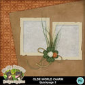 Oldeworldcharm05_small