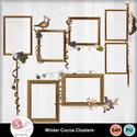 Wintercocoa_clusters_small