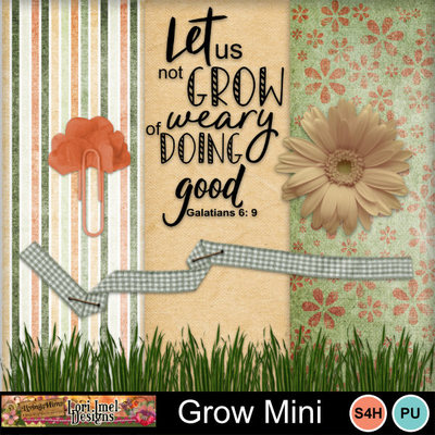 Lai_grow_mini