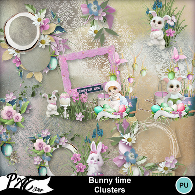 Patsscrap_bunny_time_pv_clusters
