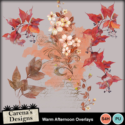 Warm-afternoon-overlays