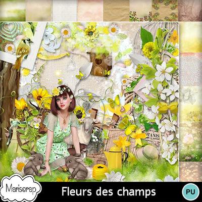 Msp_fleurs_des_champs_pv_mms