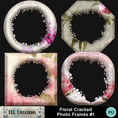 Floral_cracked_photo_frames_1-01