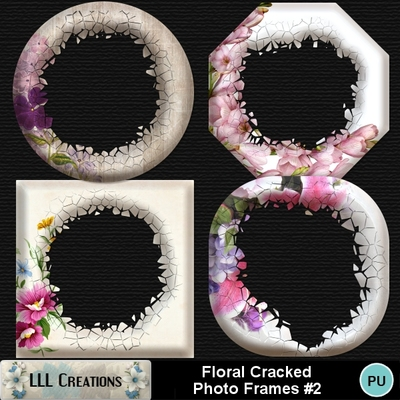 Floral_cracked_photo_frames_2-01