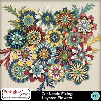 Car_needs_fixing_fl