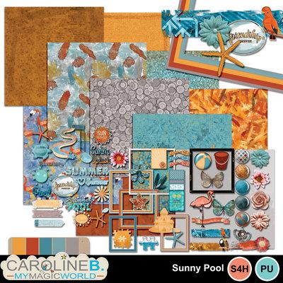 Sunny-pool_kit_1