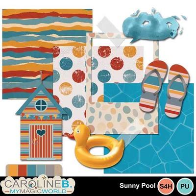Sunny-pool_mini2_1