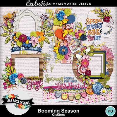 Lisarosadesigns_boomingseason_clusters
