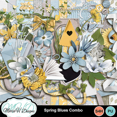 Spring_blues_combo_01