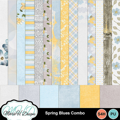 Spring_blues_combo_02