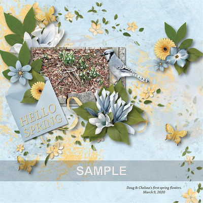 Spring_blues_combo_09