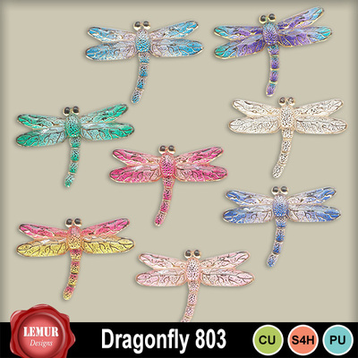 Dragonfly803