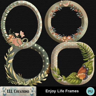 Enjoy_life_frames-01