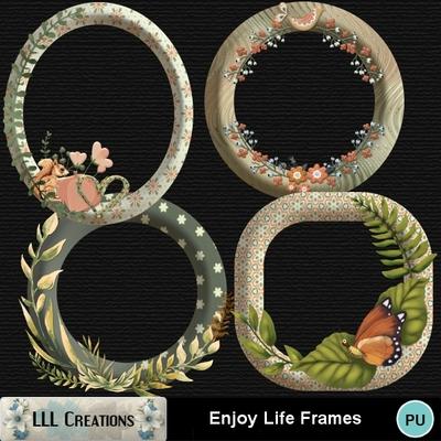 Enjoy_life_frames-01