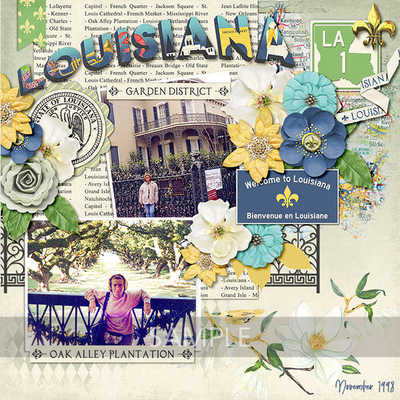 Best-of-louisiana-12