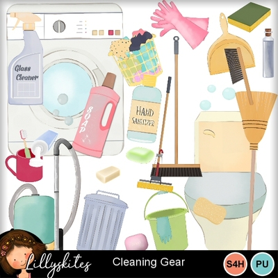 Cleaning_gear1