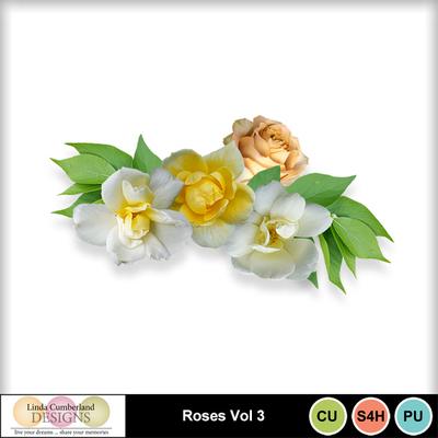 Roses_vol3-1