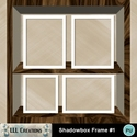 Shadowbox_frame_1-01_small