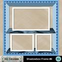 Shadowbox_frame_4-01_small