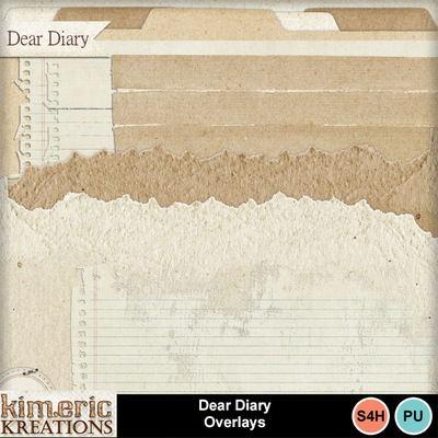 Dear_diary_bundle-8