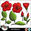 Lisarosadesigns_redhibiscus_small