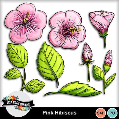 Lisarosadesigns_pinkhibiscus