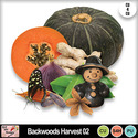 Backwoods_harvest_02_preview_small