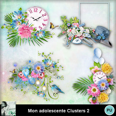 Louisel_mon_adolescente_clusters2_preview