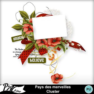 Patsscrap_pays_des_merveilles_pv_cluster