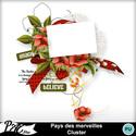 Patsscrap_pays_des_merveilles_pv_cluster_small