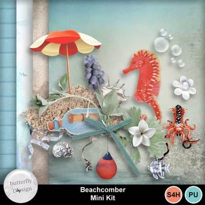 Bds-beachcomber-pv