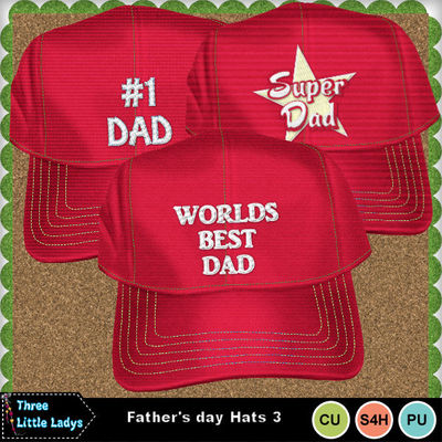 Father_s_day_hats_3-tll