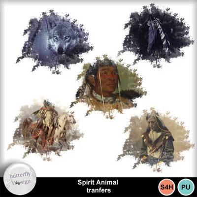 Bds_spiritanimal_pv_transf