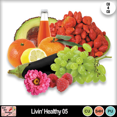 Livin__healthy_05_preview