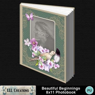 Beautiful_beginnings_8x11_pb-001a